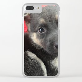 Baby Stella Clear iPhone Case