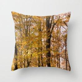 North Georgia Fall Colors 2 Throw Pillow