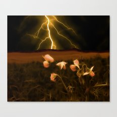 In darkest night one sees the flash but beauty soothes the karmic crash Canvas Print