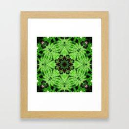 Fern and friends mandala - Maidenhair, Adiantum 567 kal 25 Framed Art Print