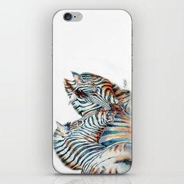African Zebra iPhone Skin