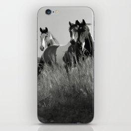 Cariboo Horses iPhone Skin