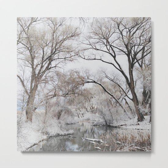 Winter Creek Canopy Metal Print