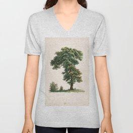 Oak Tree Botanical Illustration Unisex V-Neck