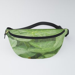 Florida: Lush Forest 4 Fanny Pack