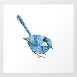BLUE FAIRY WREN Art Print