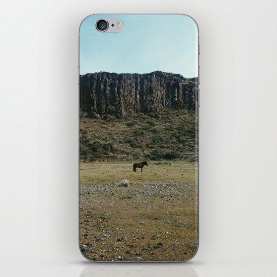 Rock Pasture Pony iPhone & iPod Skin