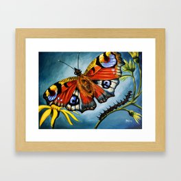 Peacock Butterfly & Caterpillar Art Print Framed Art Print