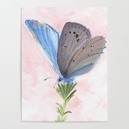 Blue and Purple Butterfly Art Poster