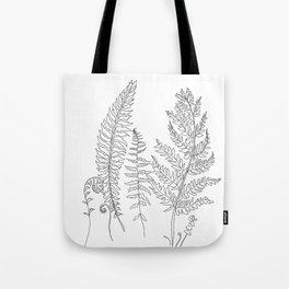 Minimal Line Art Fern Leaves Tote Bag