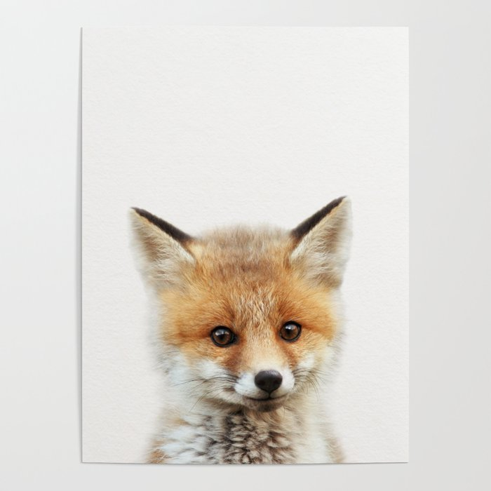 Baby Fox Baby Animals Art Print By Synplus Poster By Synplus Society6