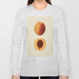 Vintage Illustration of a Sliced Peach Long Sleeve T-shirt