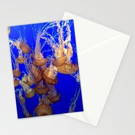 Monterey Bay Jellyfish Stationery Cards