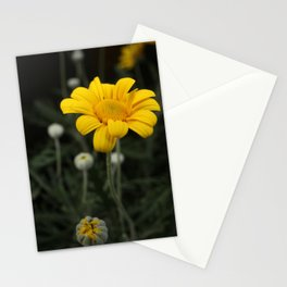Spring - Chrysanthemum Stationery Cards