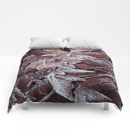 Frost 3 Comforters