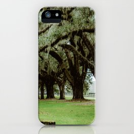 Tunnel of Spanish Moss iPhone Case