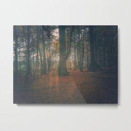 Hidden in the woods Metal Print