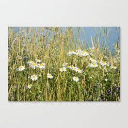 Wildflowers along the lake Canvas Print