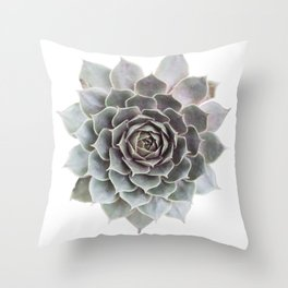 Succulent burst Throw Pillow