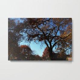 fallday Metal Print