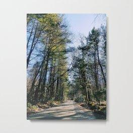 Journeys in the Woods Metal Print