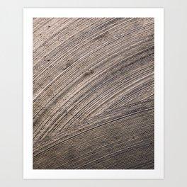 Swept Art Print