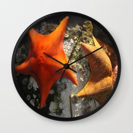 Starfish Duet Wall Clock
