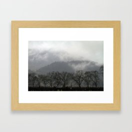 Napa Valley Vineyards, California - Mountains, Mist, and Trees Framed Art Print