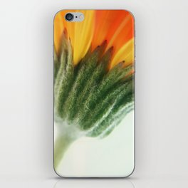 Spring vibes.. iPhone Skin