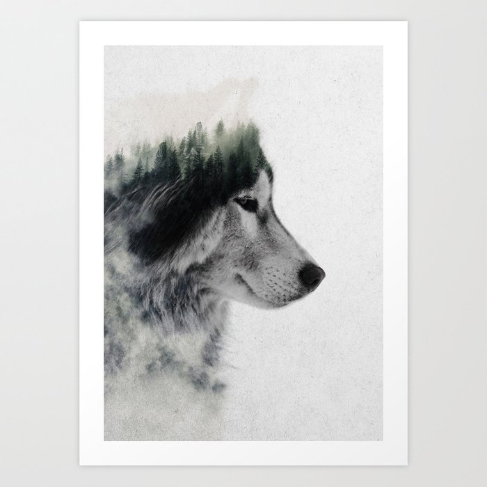 Discover the motif WOLF STARE by Andreas Lie as a print at TOPPOSTER