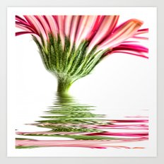 Pink Gerbera Flood 4 Art Print