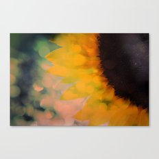 Sunflower I (mini series) Canvas Print