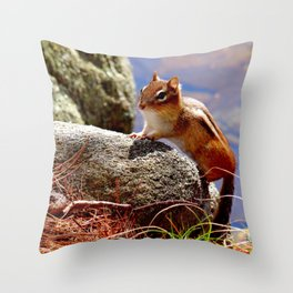 Portrait of a Chipmunk Throw Pillow