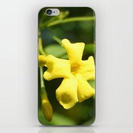 Carolina Jasmine Single Bloom In Sunlight iPhone Skin