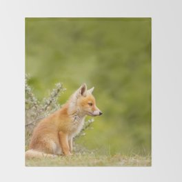 The Cute Fox Kit (Red Fox Cub) Throw Blanket