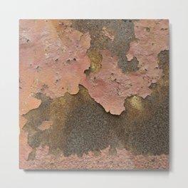 Texture #18 Rust Metal Print