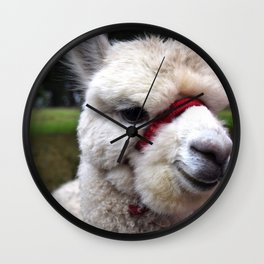 Marvin The Alpaca Wall Clock