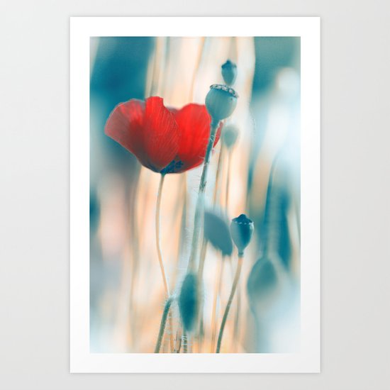 Poppies(radiance). Art Print