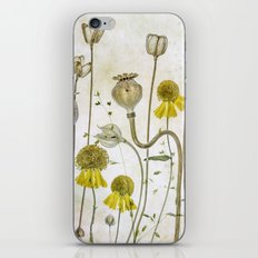 Poppies and Heleniums iPhone & iPod Skin