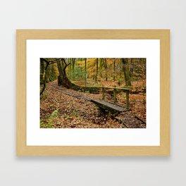 Roddlesworth Wood in the Autum Framed Art Print
