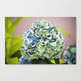 Longwood Gardens - Spring Series 255 Canvas Print