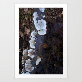 Forest Magic - Soul Sisters Art Print