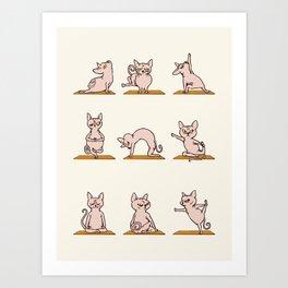 Sphynx Cat Yoga Art Print