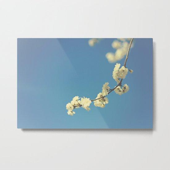 My Vintage blue sky Metal Print