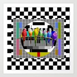 Testing the Rainbow Budgies Art Print