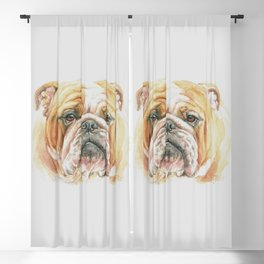 English Bulldog portrait Blackout Curtain