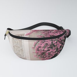 The Window Fanny Pack