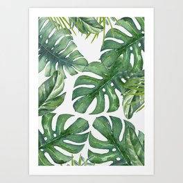 Monstera Leaves Kunstdrucke
