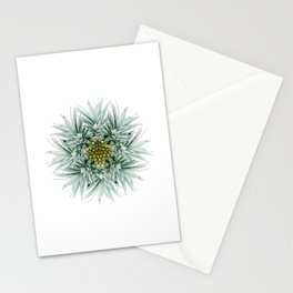 Mandala Pineapple Stationery Cards