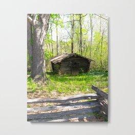 Oak at Sautee Metal Print
